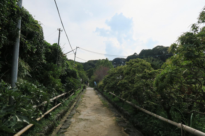 浄瑠璃寺までの参道。この辺りは歴史的自然環境保全地域に指定され、石仏の里としても親しまれています。