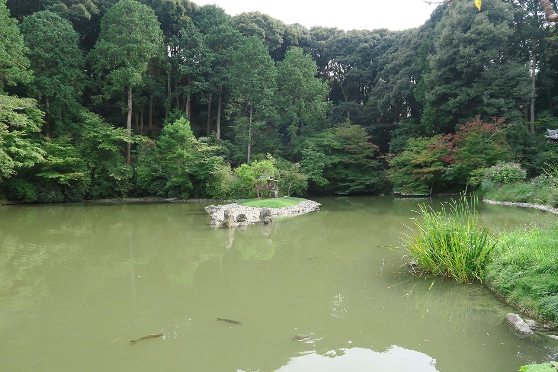 宝池にはコイやカメが泳いでいました。