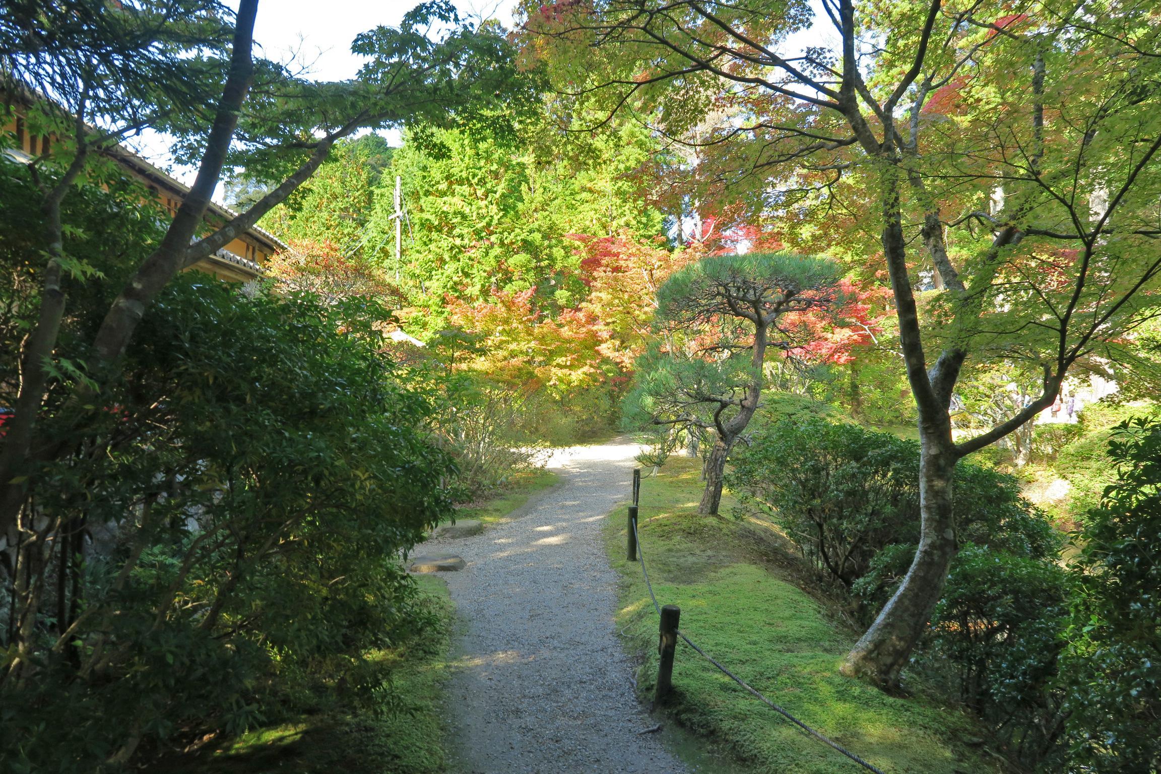 庭園周辺には色とりどりの紅葉がきれいでした。