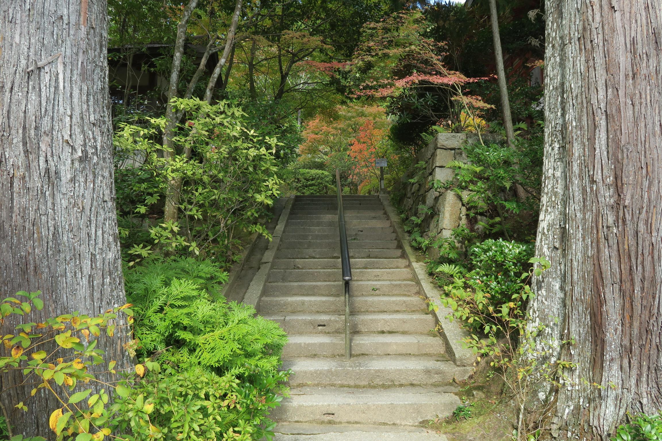 階段を登って本堂に向かいます。
