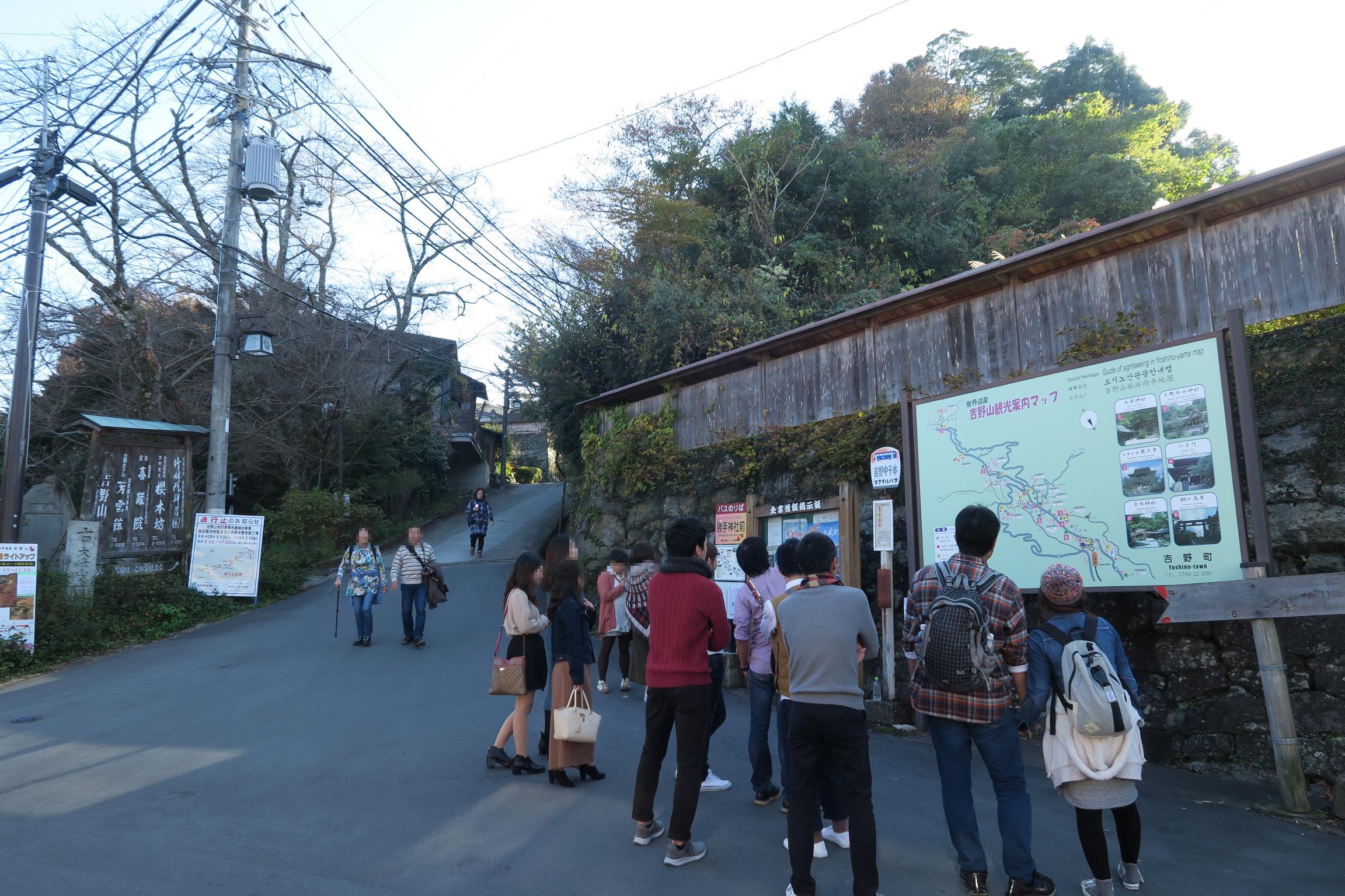 案内マップを見る観光客。左奥の坂を登っていくと奥千本です。