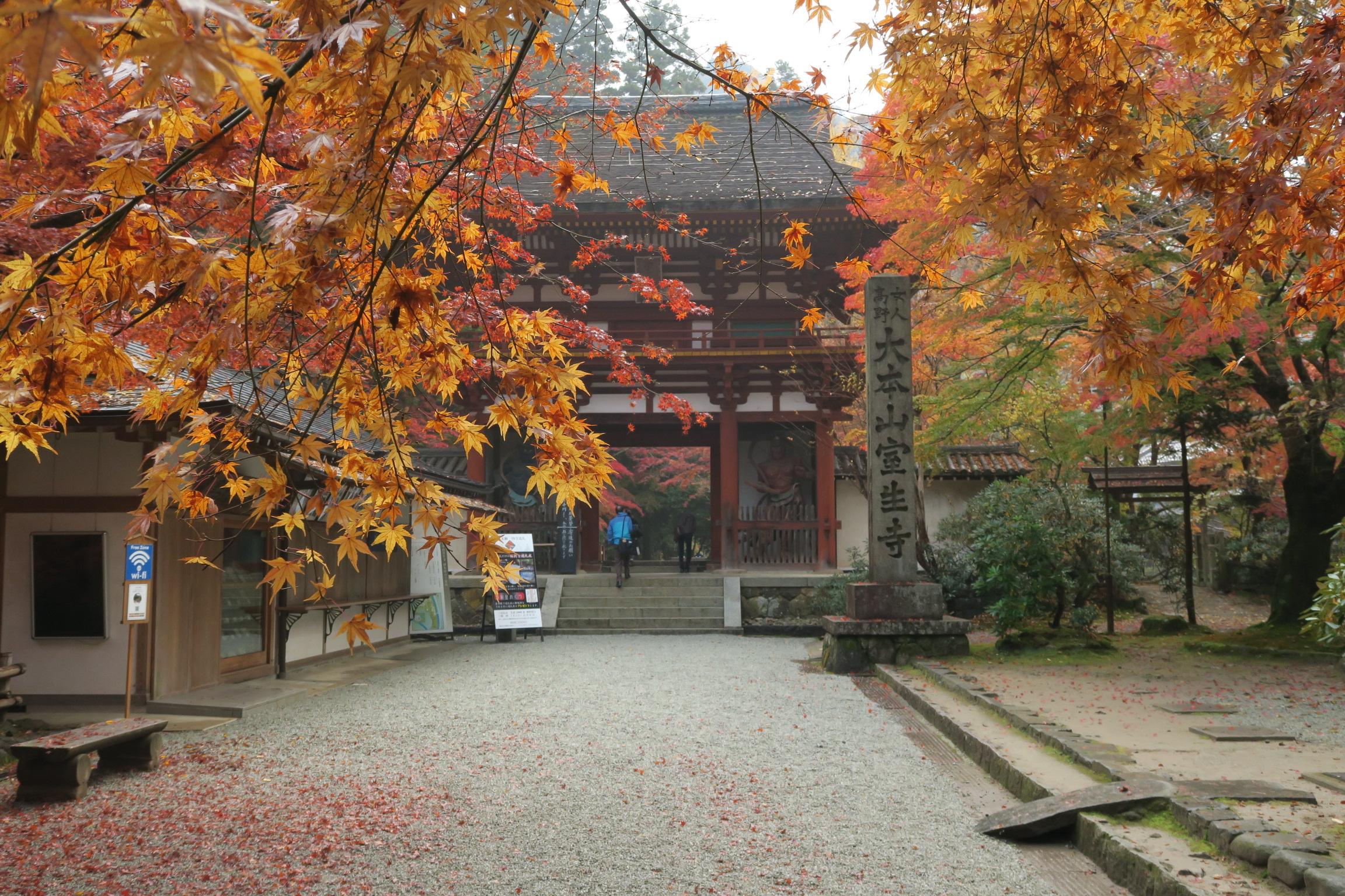 仁王門が見えてきました。焼失後、長い間再建されませんでしたが、昭和40年に再建されました。
