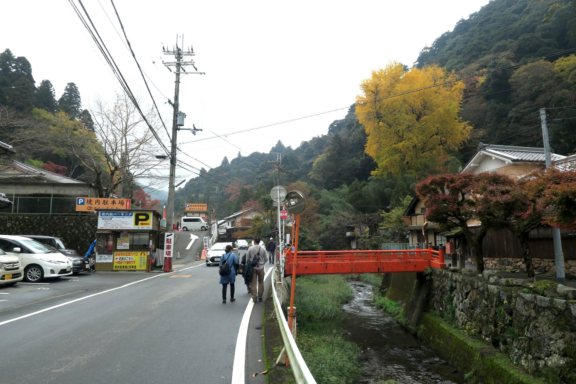 右手に素盞雄(すさのお)神社の「初瀬のイチョウの巨樹」が見えてきました。大きいですねぇ。
