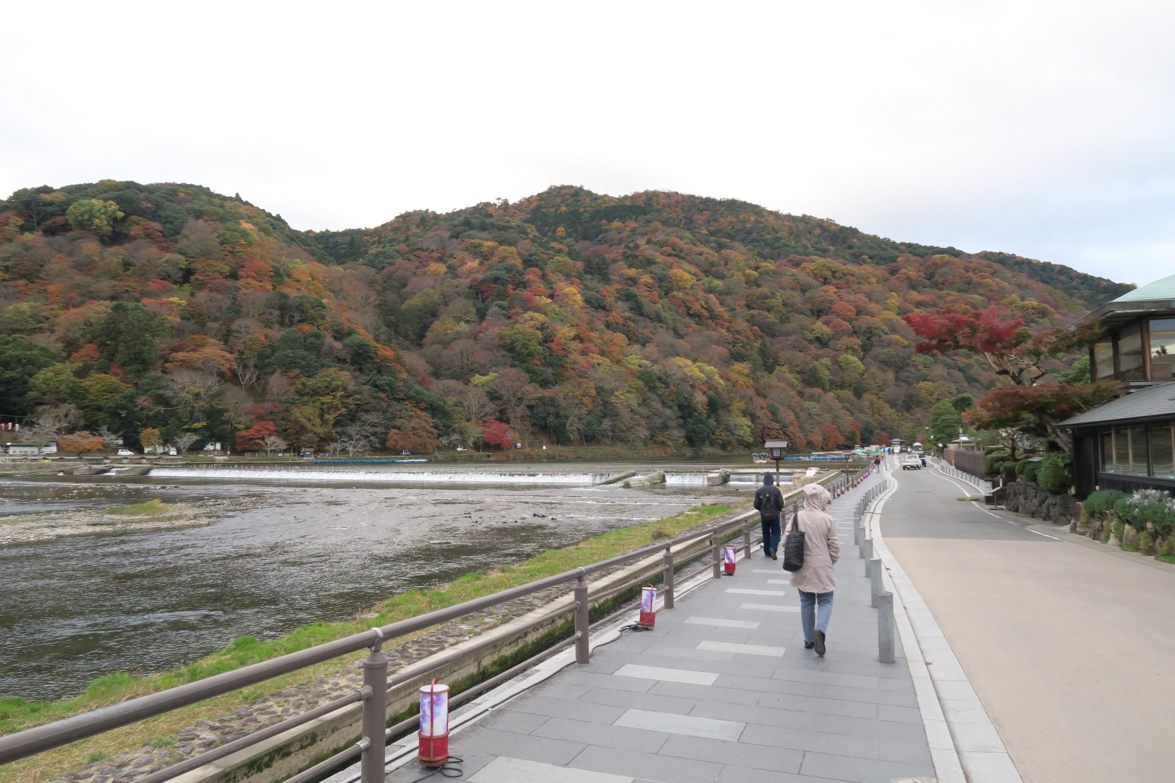天気は曇りですが、嵐山、渡月橋付近の紅葉はきれいでした。