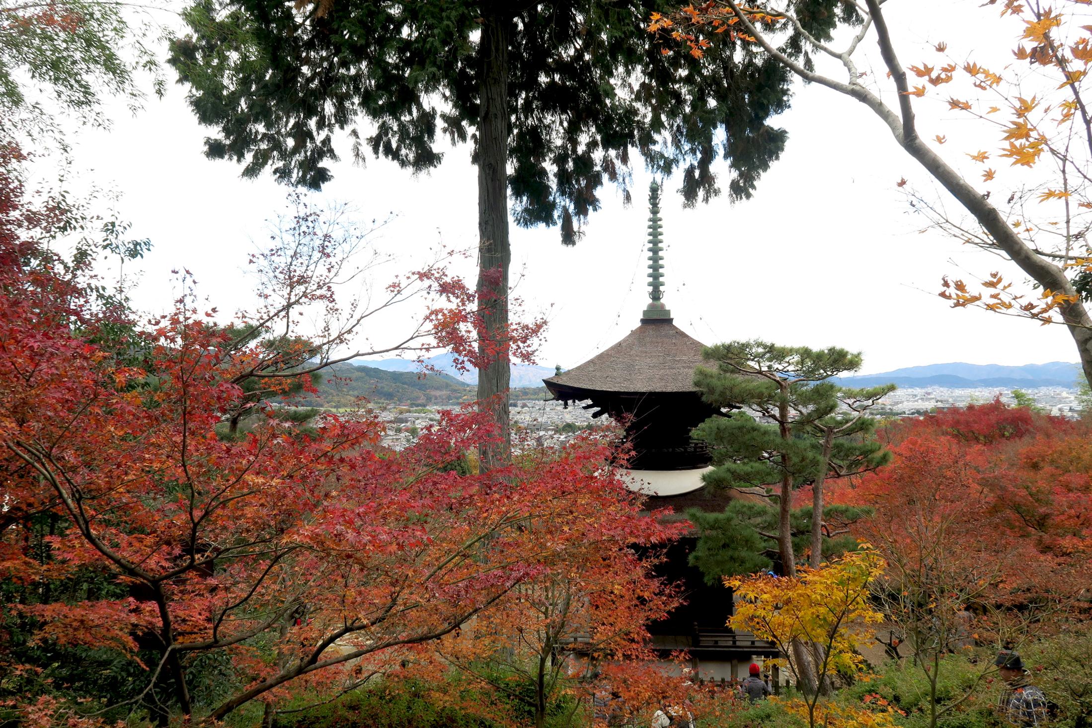 常寂光寺の多宝塔。多宝塔は平安時代、密教とともに登場した新しい形式の建物。