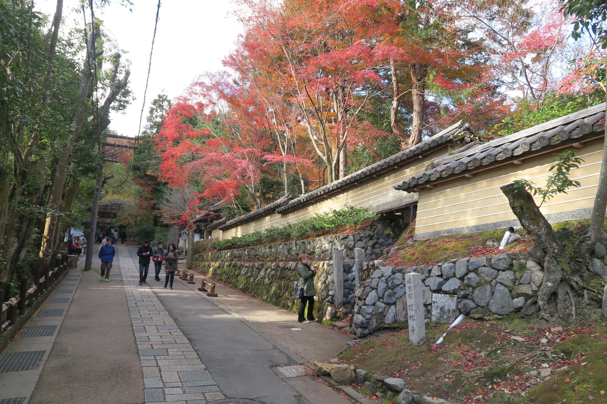 祇王寺の途中にある檀林寺の紅葉がきれいでした。祇王寺も期待してしまいましたが・・・。
