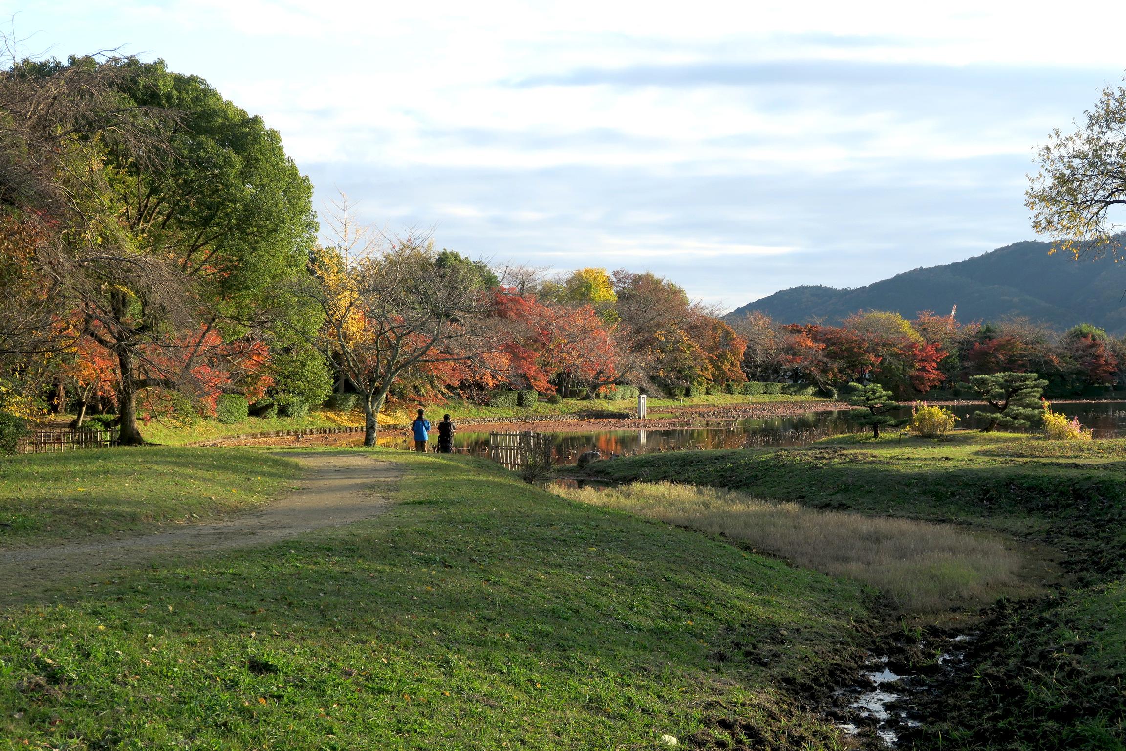 紅葉の季節でものんびりとした時間が過ごせますので、オススメです!