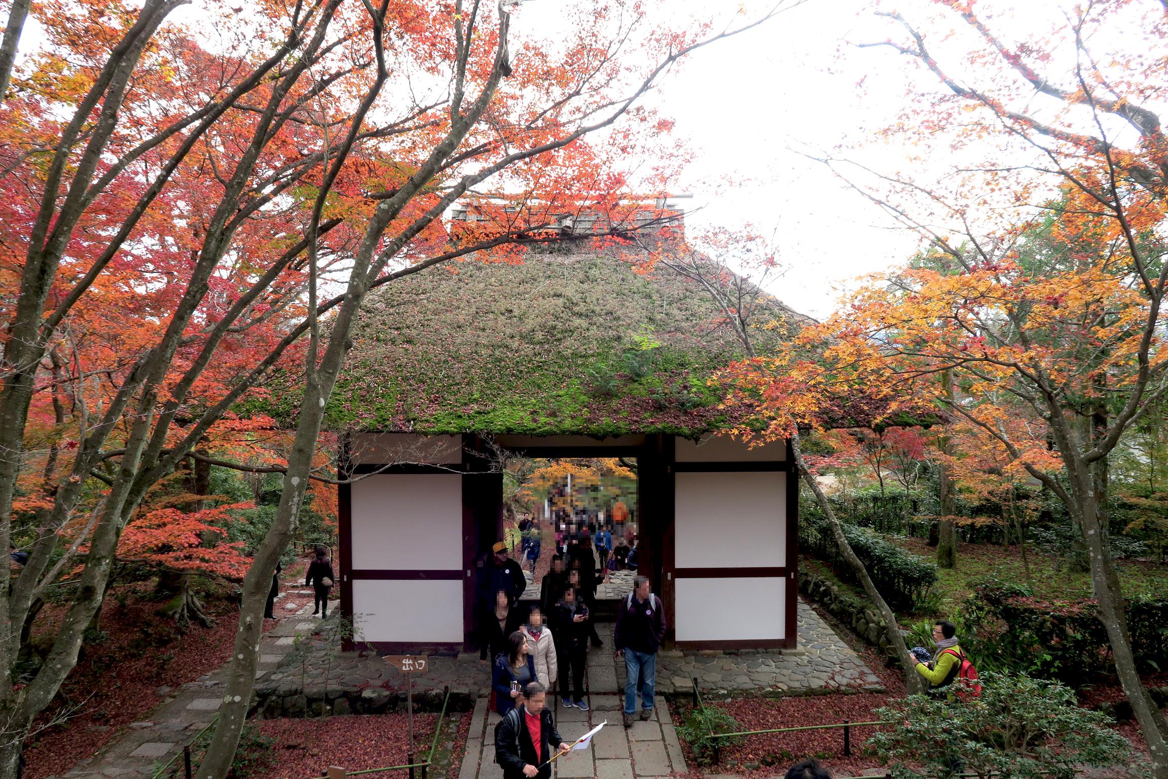 常寂光寺の仁王門。境内建築物の中で最も古い建物だそうです。