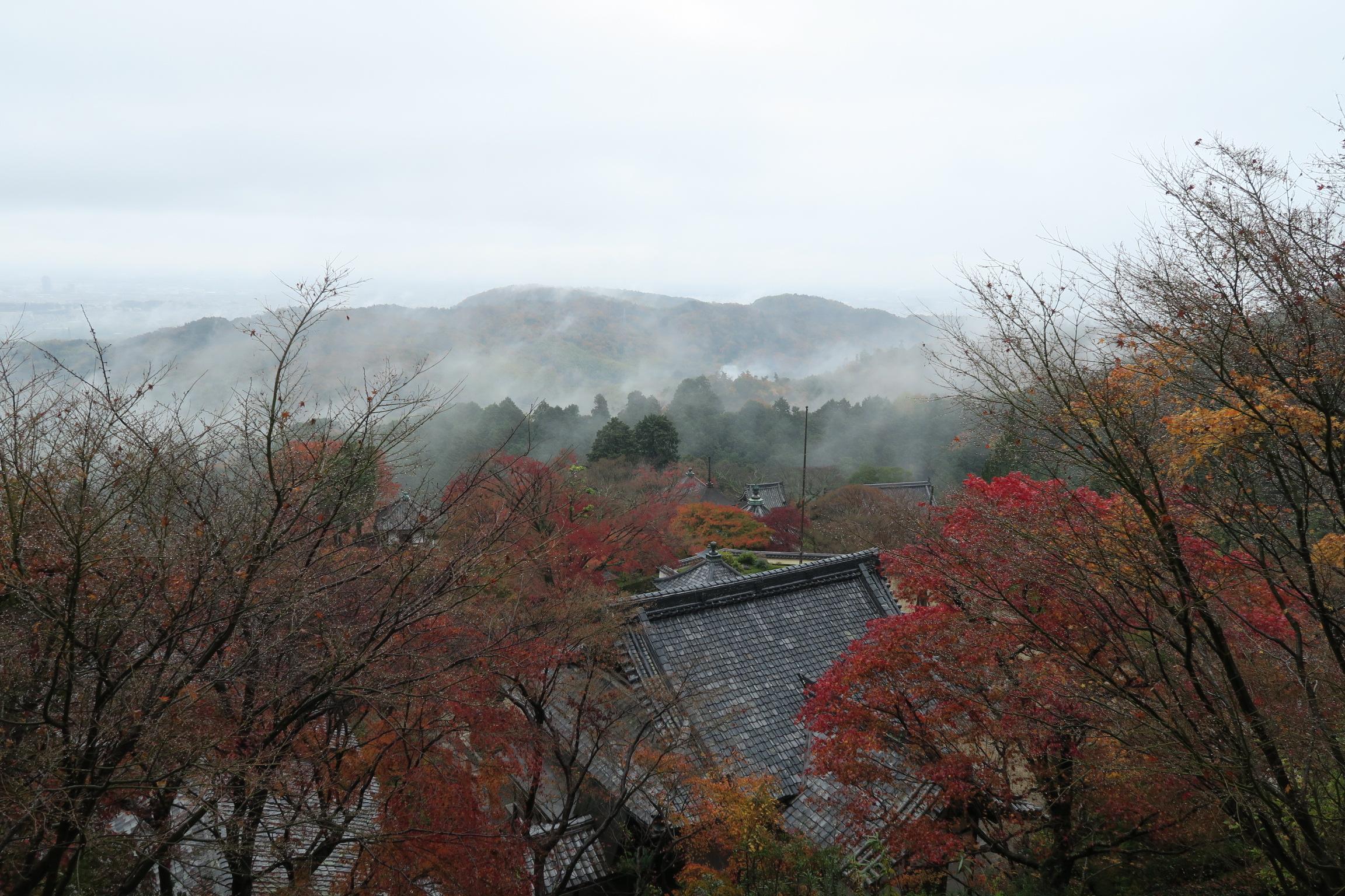 雨が降り、ガスのかかる善峯寺もきれいでした!