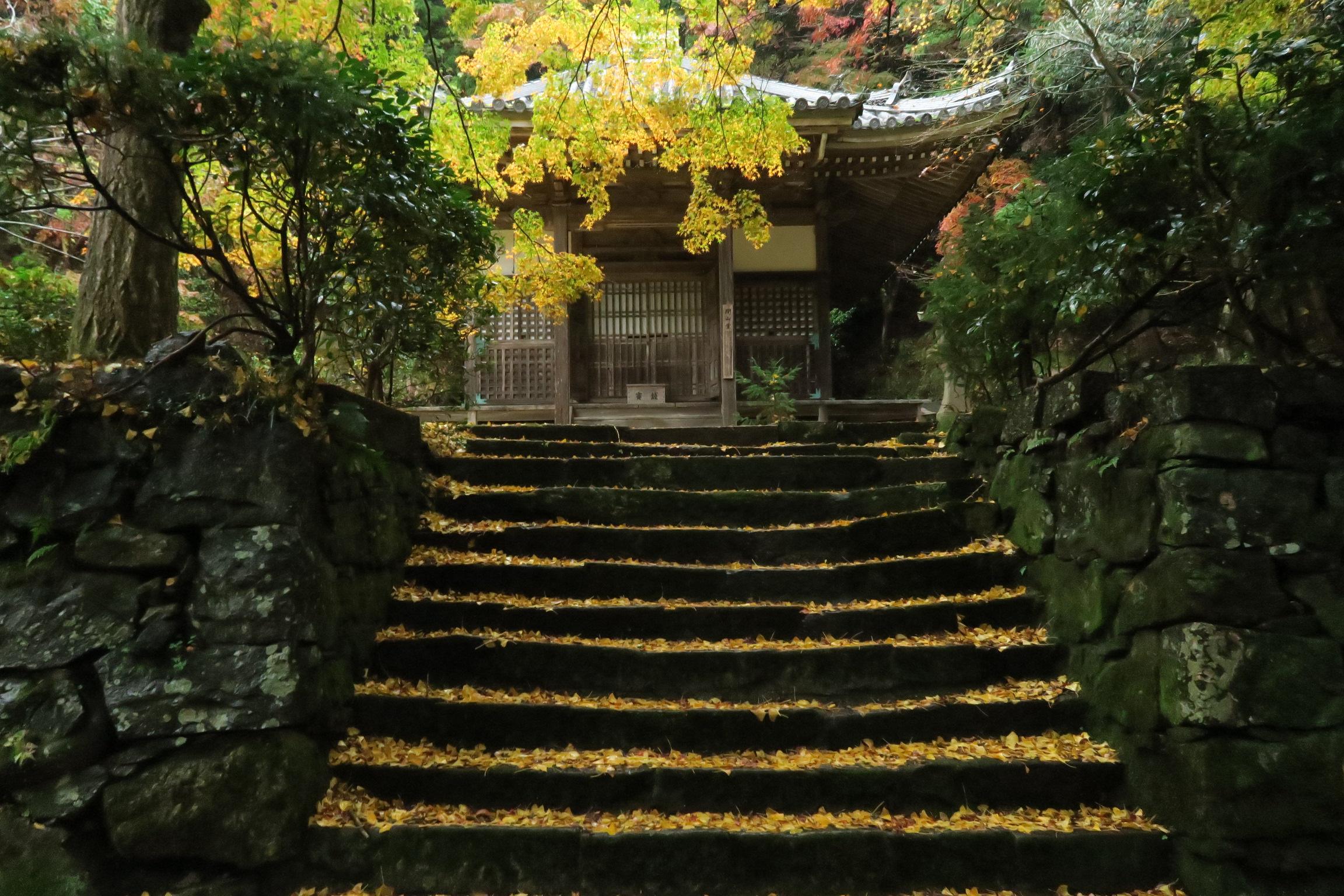 見晴らし台へ向かう途中にある開山堂。イチョウの葉が敷き詰められていました。