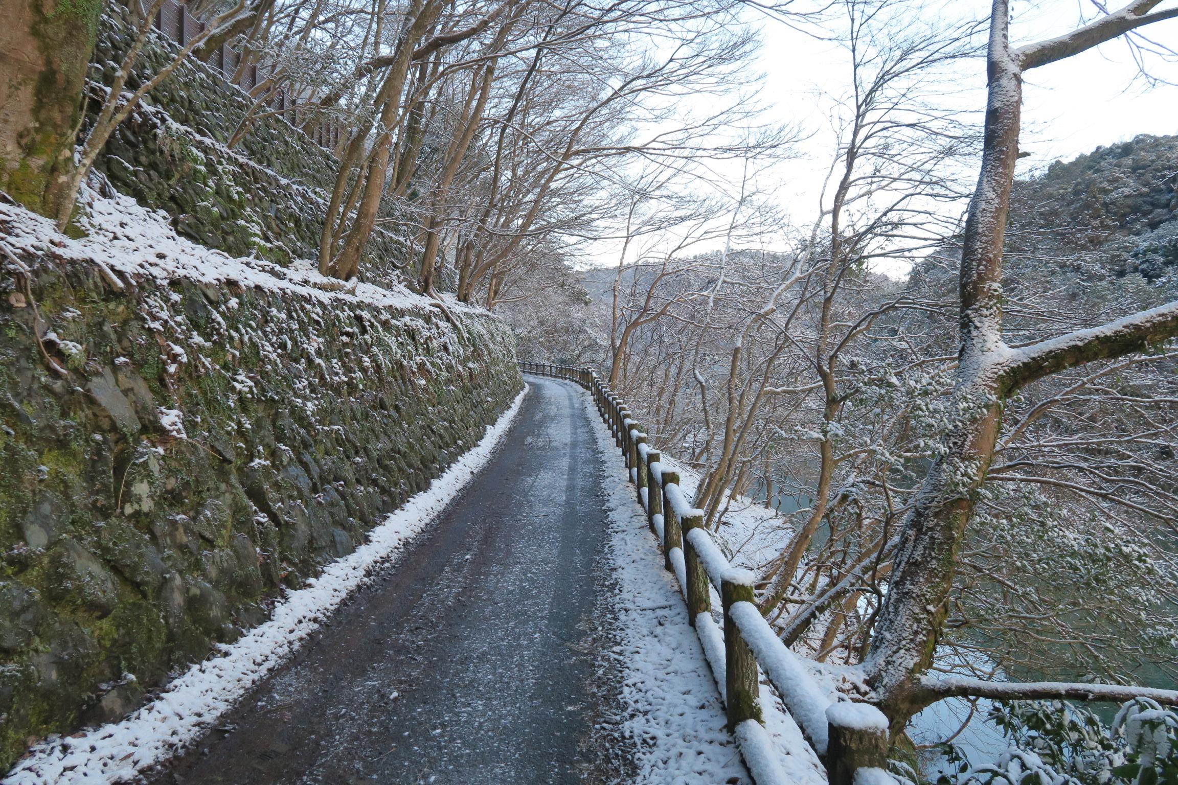 道も凍っていました。