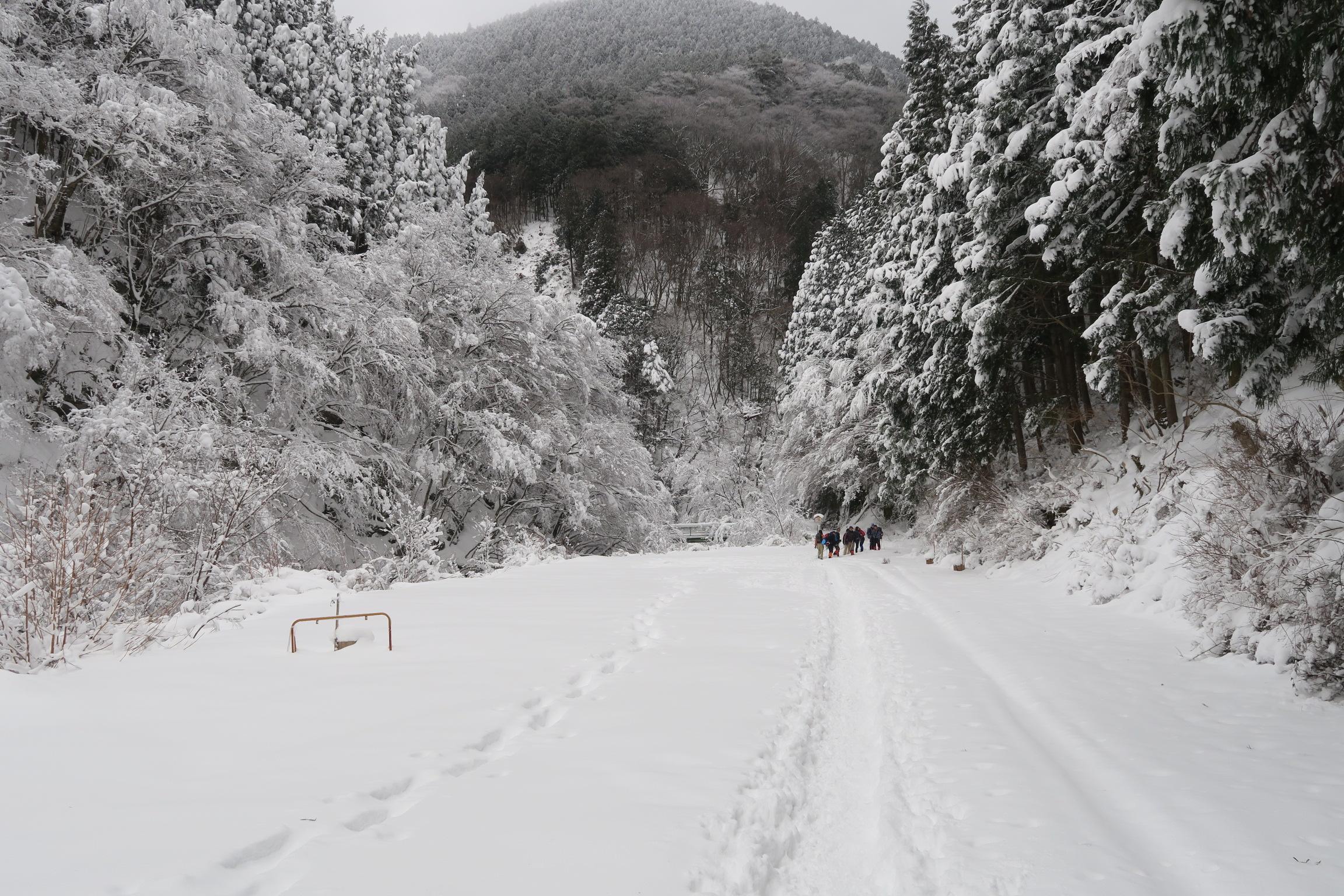 いつもなら満車の駐車場も雪が深いため辿りつけた車はゼロ。風も穏やかで降雪なし。