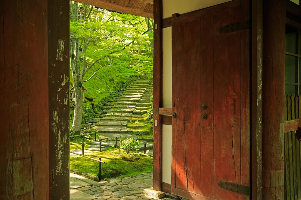 常寂光寺にも寄ることができました。
