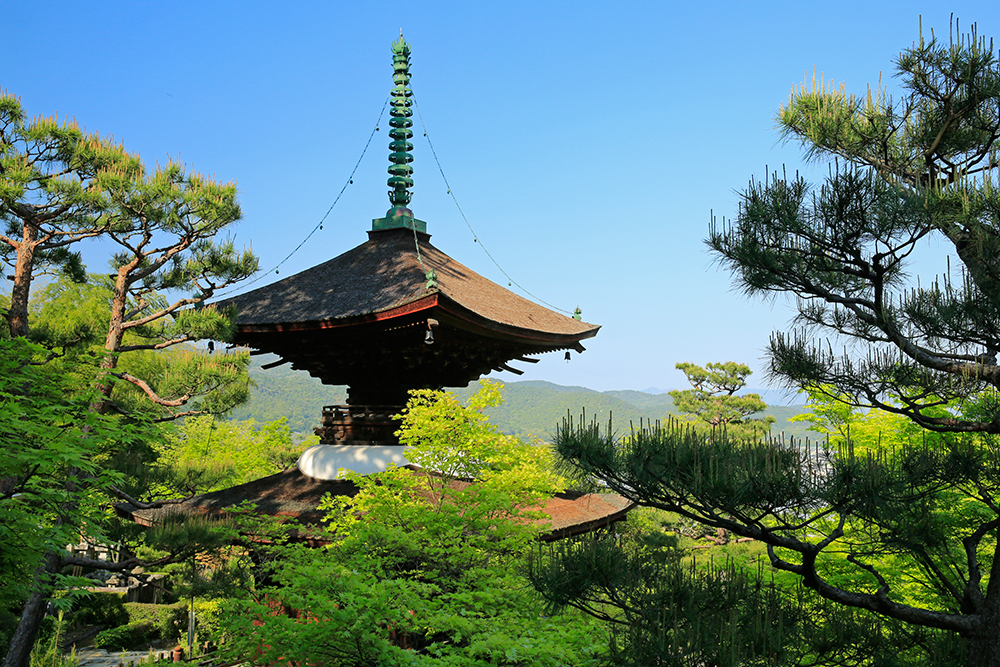 高さ12mある常寂光寺の多宝塔です。重要文化財。