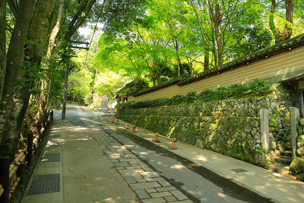 雰囲気の塀が出てきます。これは檀林寺というお寺。もう少し歩くと祇王寺です。。。
