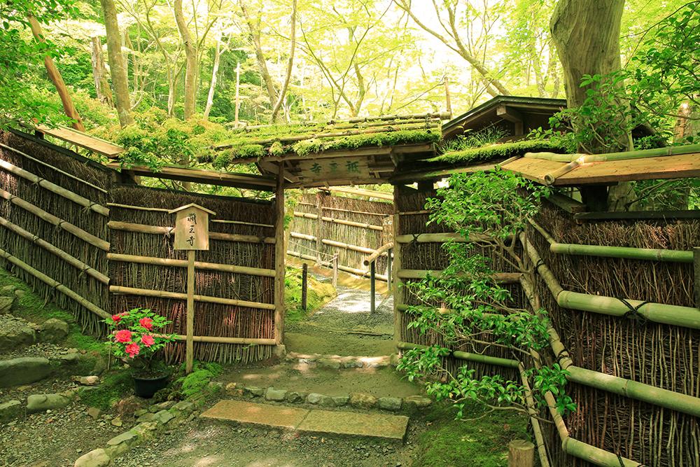 お寺というよりもお茶室のような風情ある趣きです。