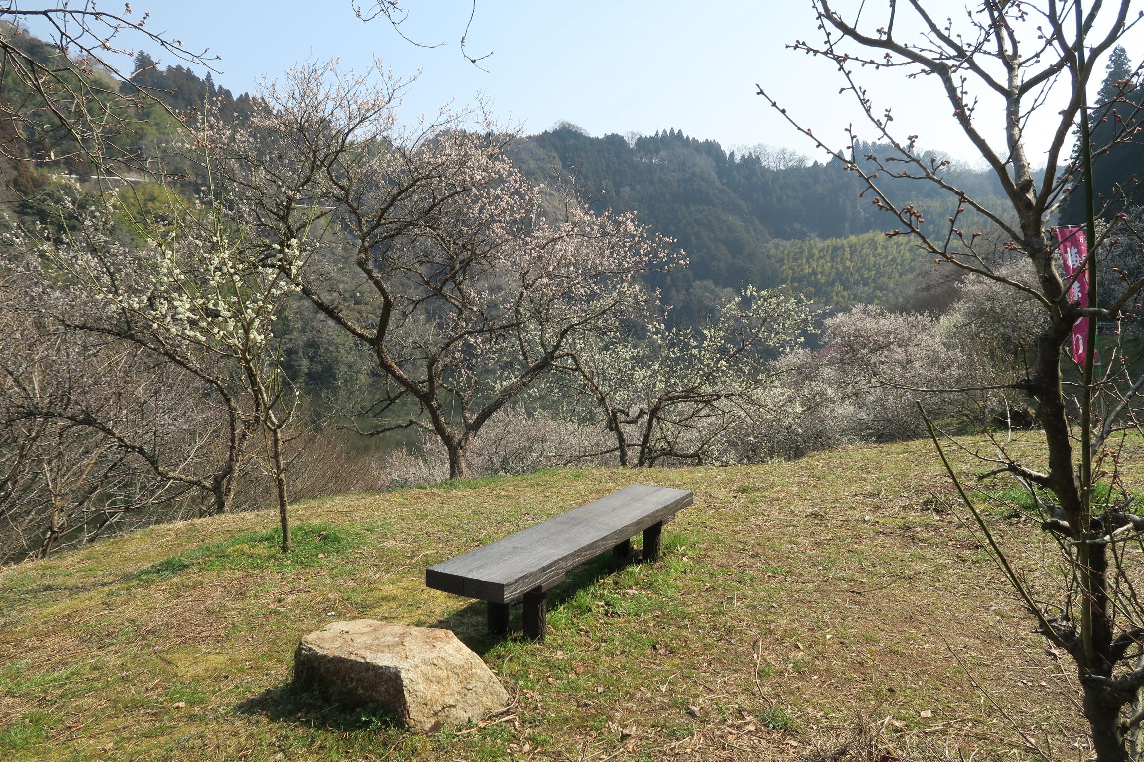 川沿いにはベンチも設置され、今日のように晴れている日はいいですね。