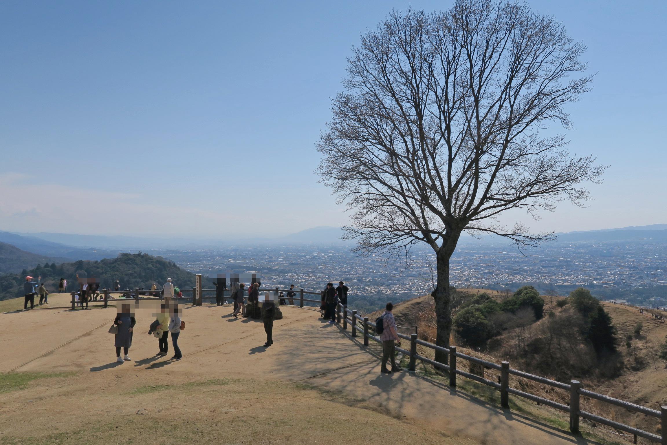 今日は奈良公園周辺の桜の下見をして若草山に向かいます。