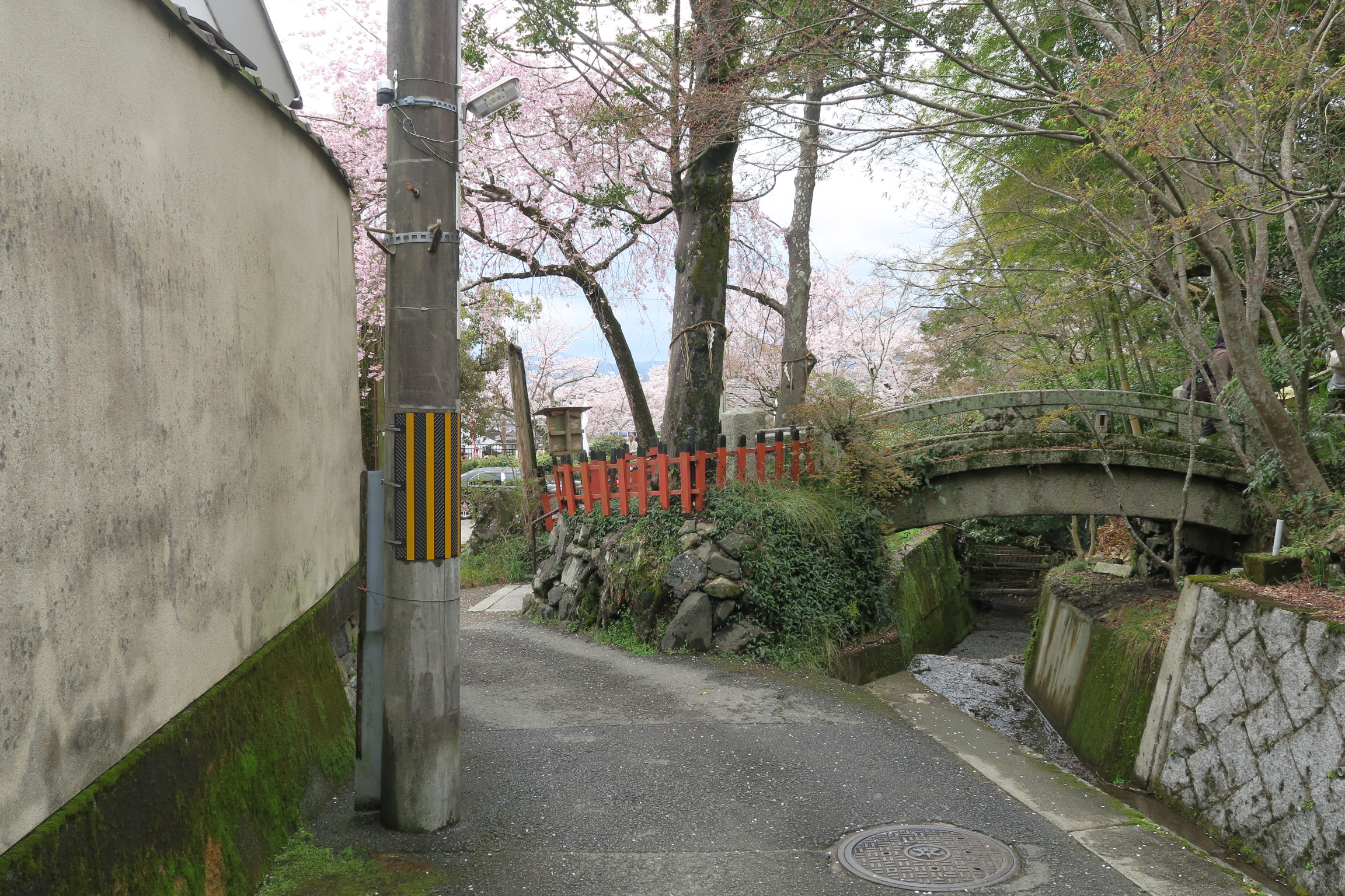 雰囲気のある若王子神社を出た散策道。