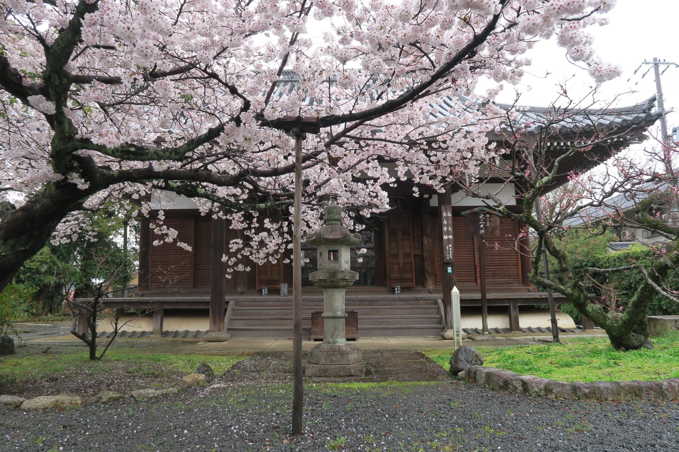 1696年建立の元三大師堂。京都府の文化財に指定されています。