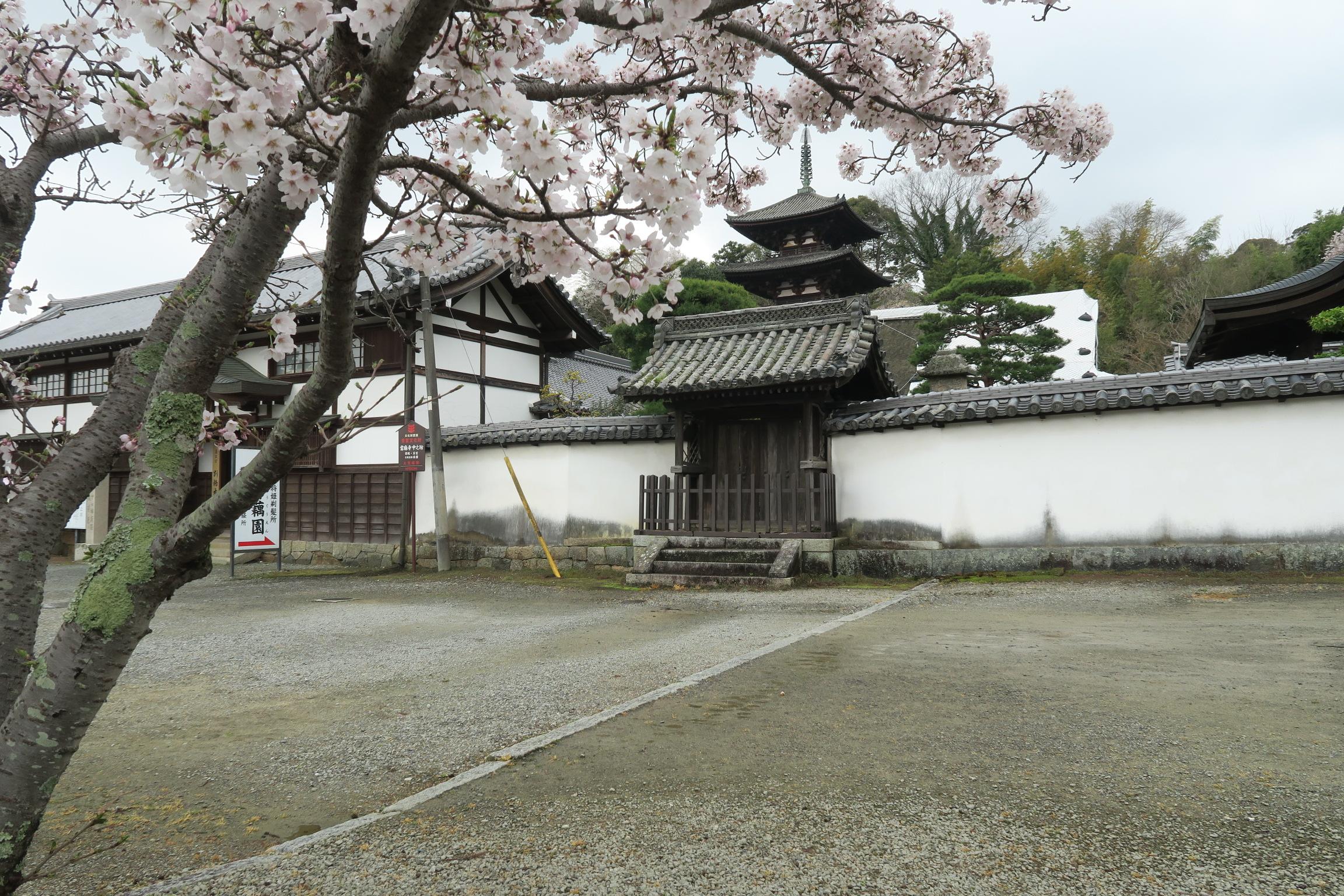 東塔は、當麻寺の中でも最も古い建造物です。当時のまま両塔が残っているのは全国でここだけ。