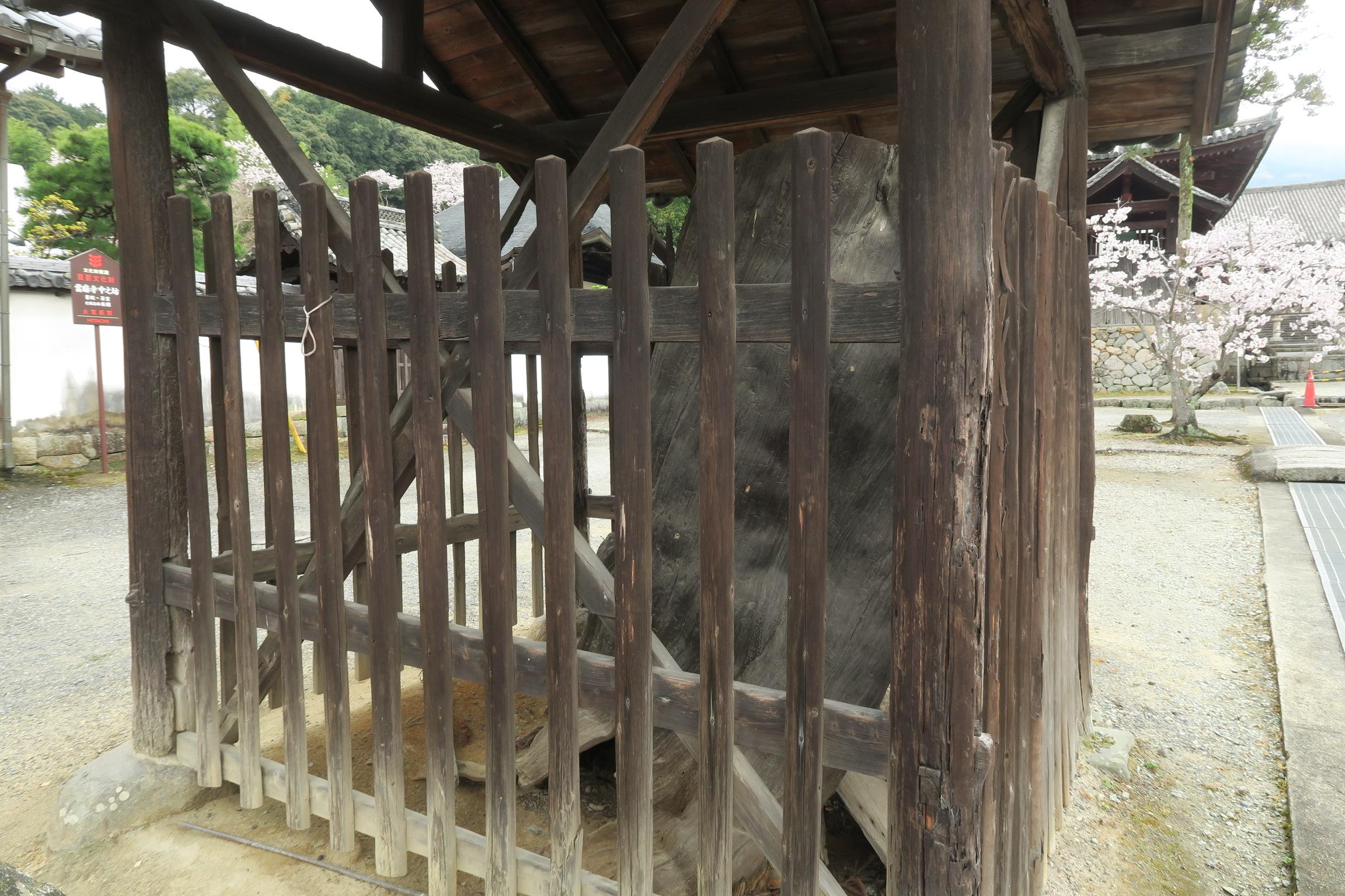 中之坊の前にある大松の「来迎松(らいごうまつ)」