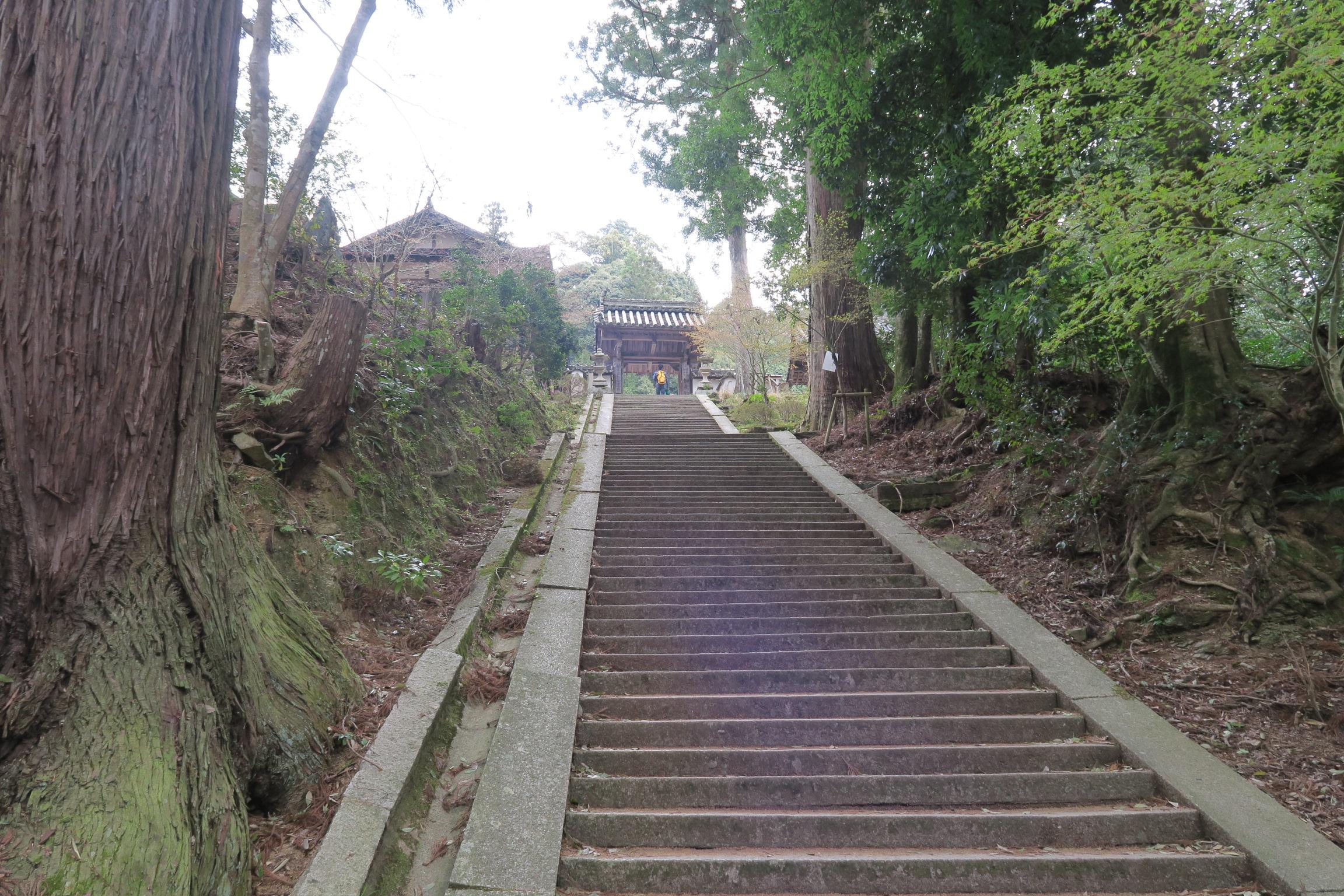 如意輪寺(にょいりんじ)が見えてきました。