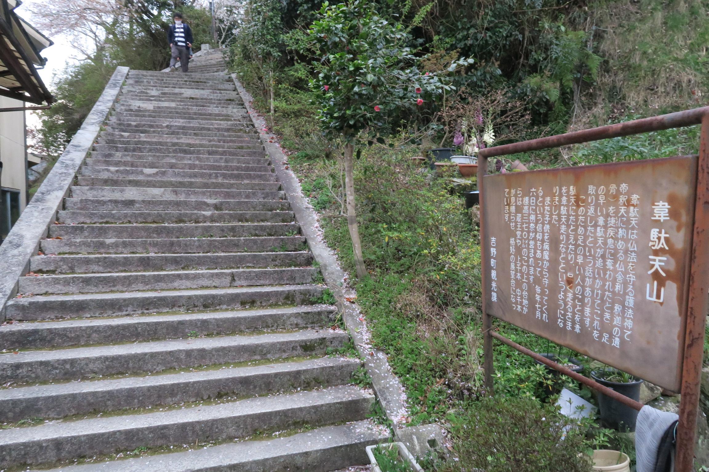蔵王堂や上千本、中千本の見渡せる「韋駄天山」に続く階段です。