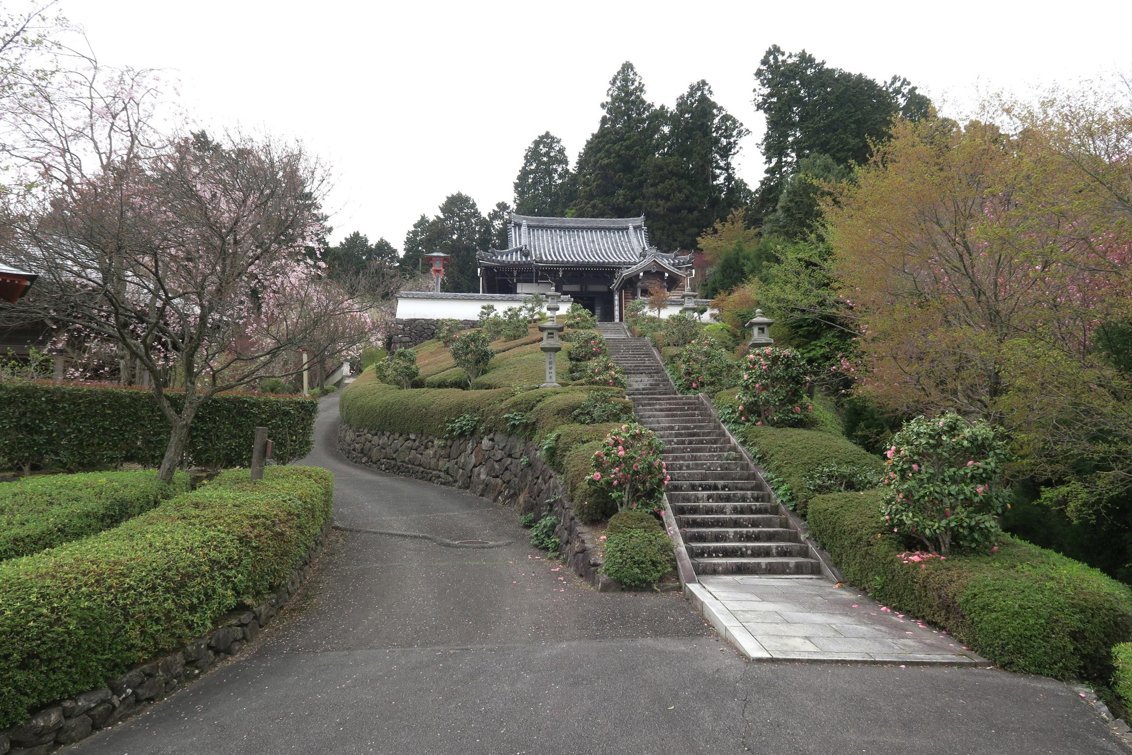 薬師堂。階段上からは善峯寺一の景色が楽しめます!