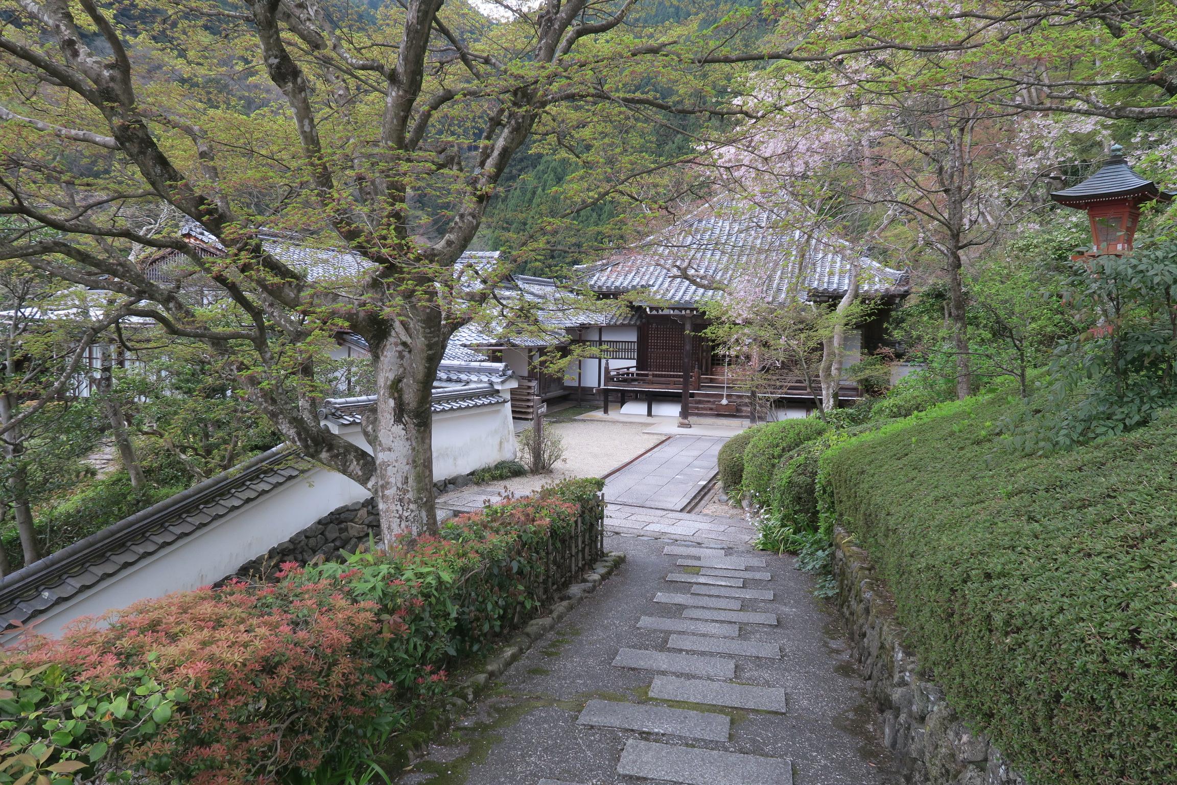 1673年に建立された阿弥陀堂。徳川家代々とお寺の檀信徒の位牌を安置するお堂とのこと。