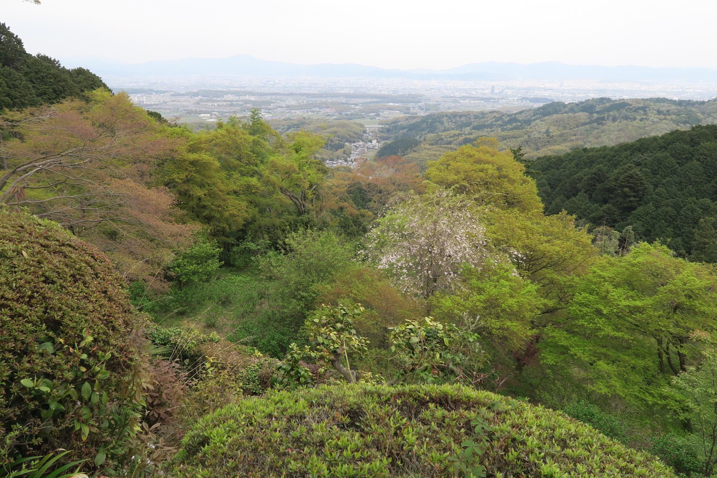 護摩堂横からの眺望。左手奥に見えるのは比叡山。新緑がきれいです。