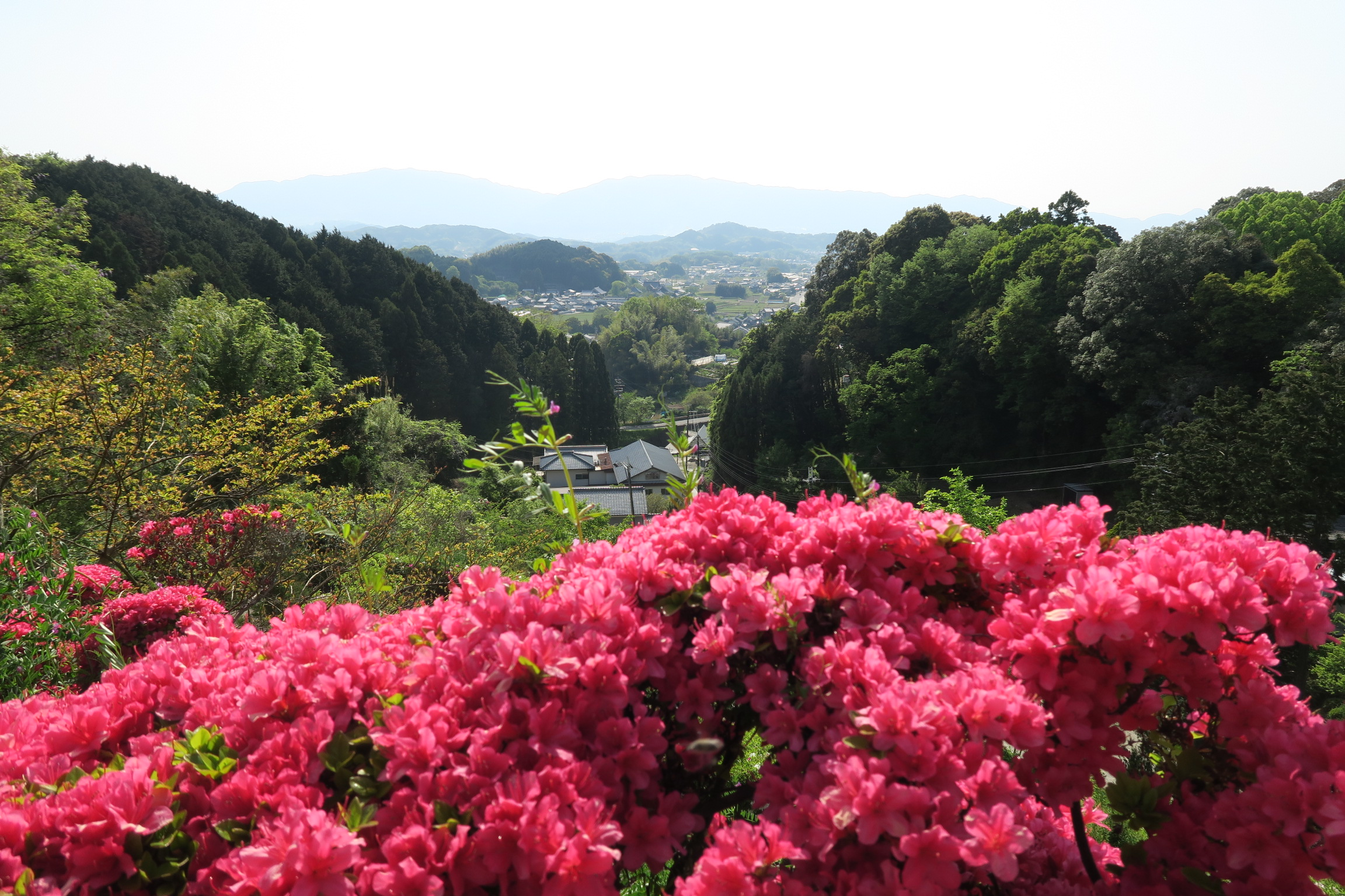 三重塔のある高台からの眺望。