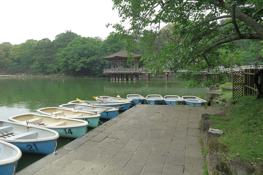 奈良公園 浮見堂 ボート