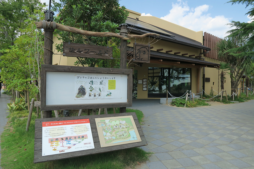 京都市動物園 ゴリラ