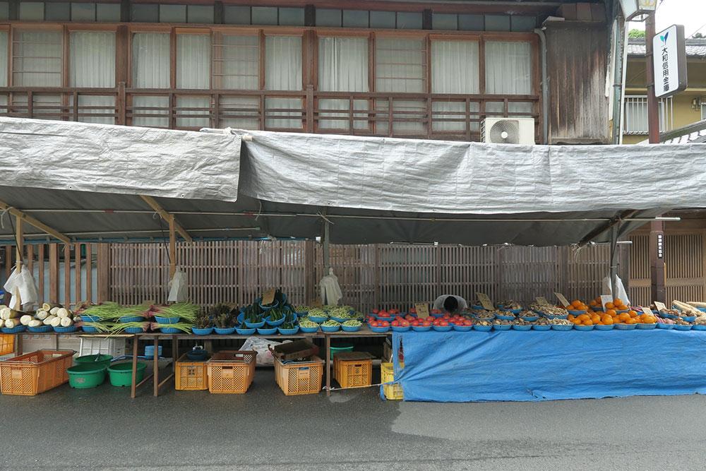 長谷寺 ぼたん祭り