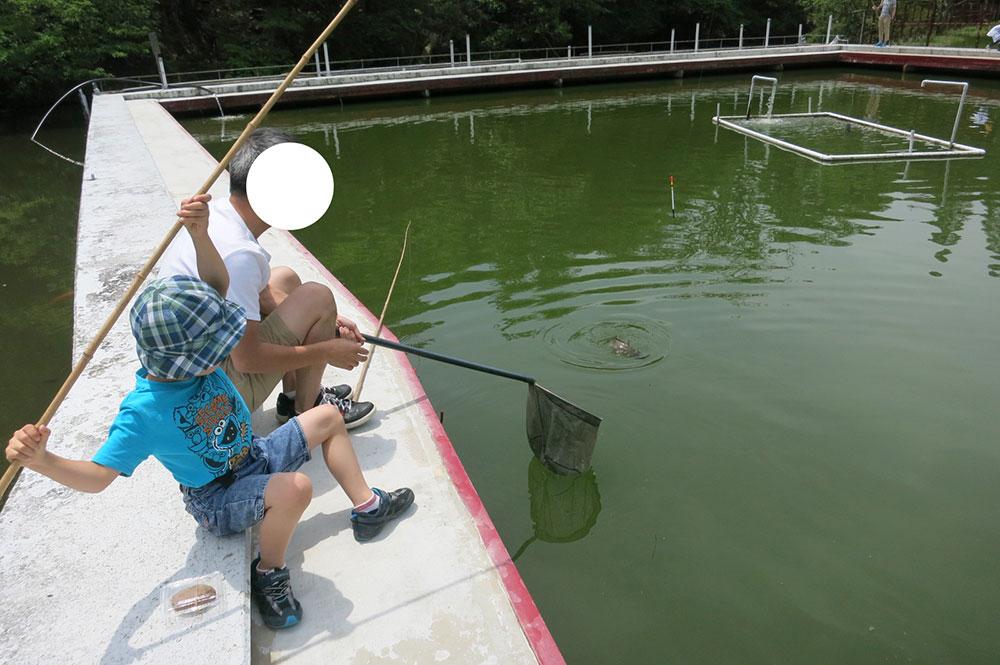 釣り堀 るりけい通天湖