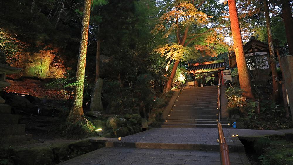 岩船寺 ライトアップ