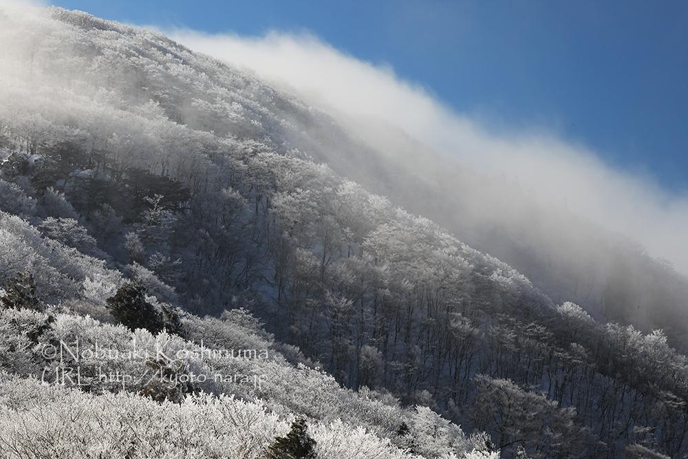 明神平 雪山