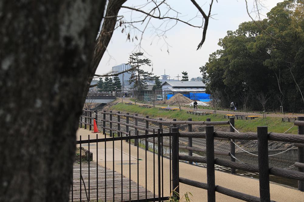 薬師寺 自転車道