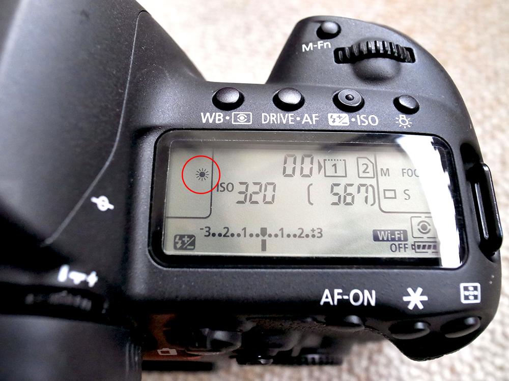 Canon EOS 5D Mark Ⅳ ホワイトバランス 太陽光