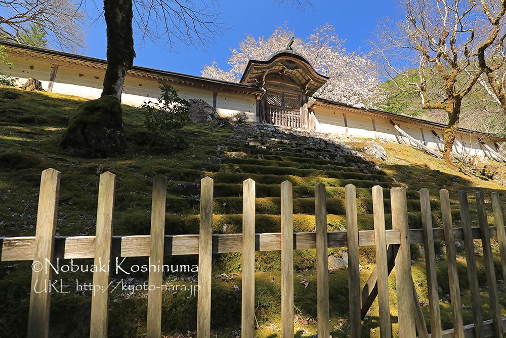 常照皇寺 勅使門の透かし彫り