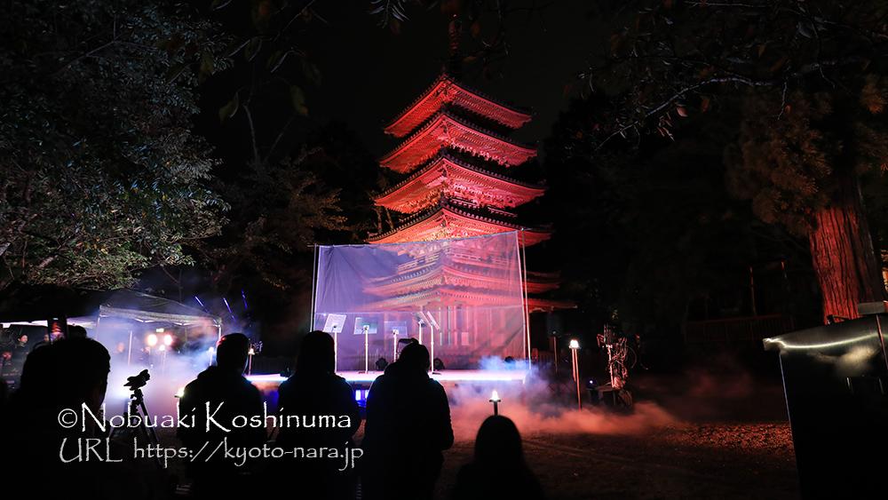 海住山寺 ライトアップ 五重塔