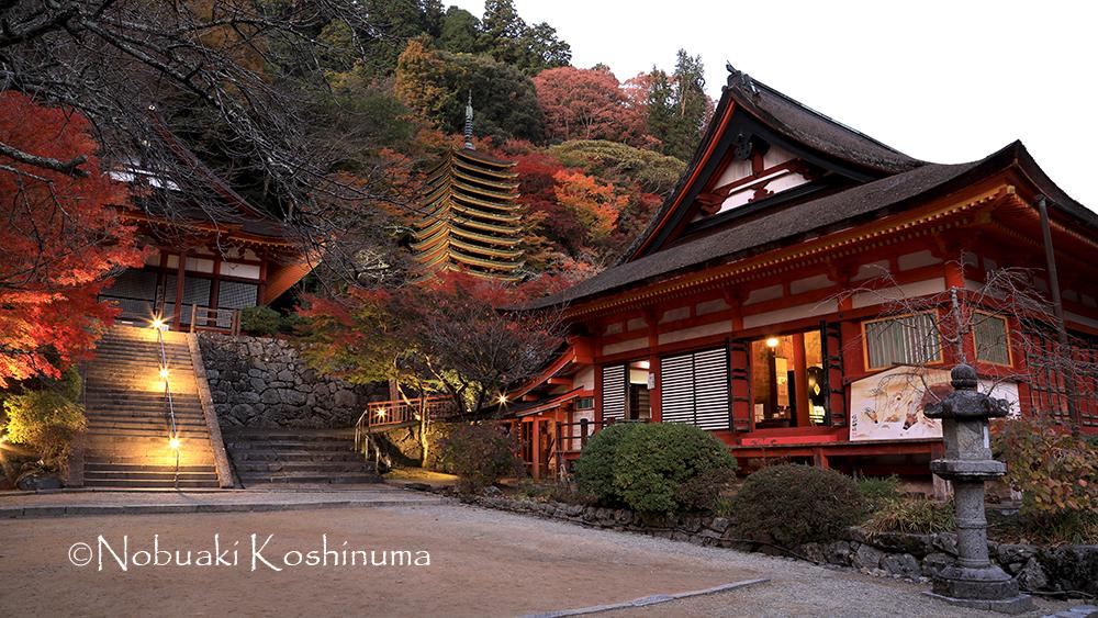 談山神社 ライトアップ