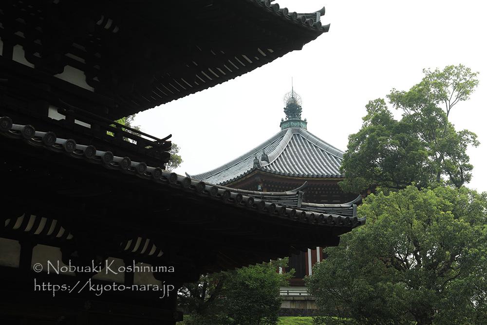 興福寺 南円堂 三重塔