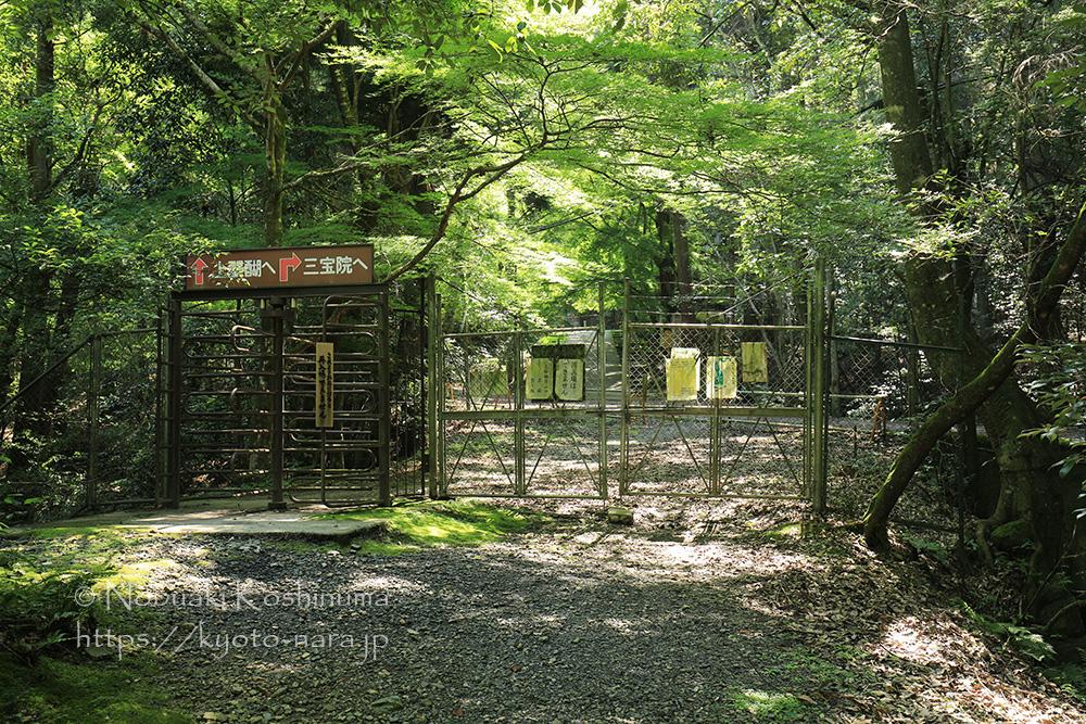 上醍醐への門