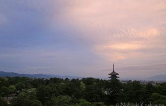興福寺 五重塔