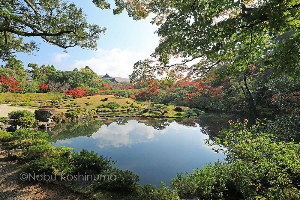 奈良 依水園 日本庭園 紅葉