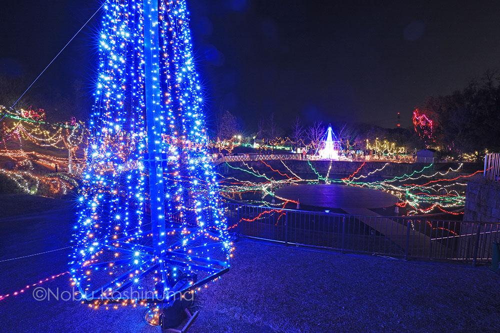 城陽市総合運動公園 ライトアップ【光のページェント TWINKLE Joyo 2020】