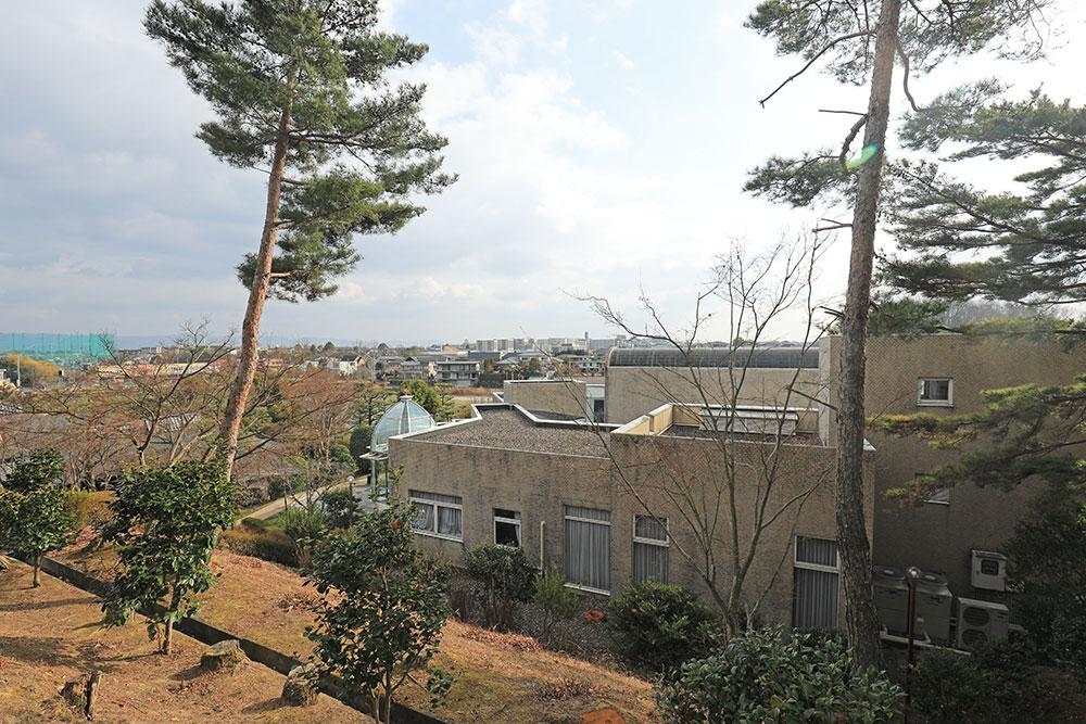奈良 松柏美術館 / 美人画を描いた上村松園、松篁、淳之と3代続く日本画を展示