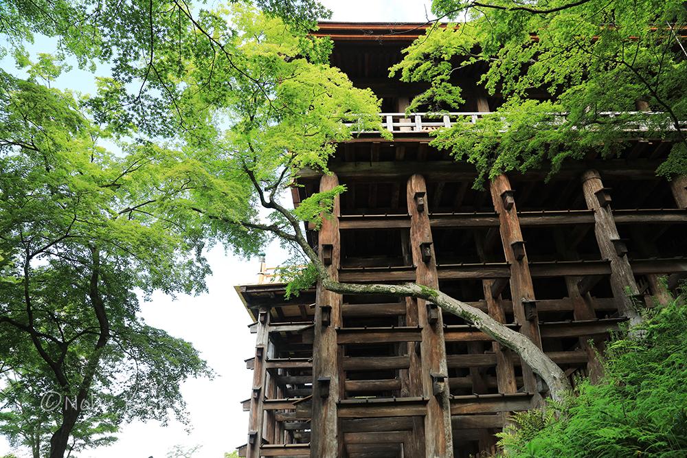 清水寺本堂(国宝) 清水の舞台